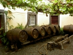 Madeira barrels in the midday sun - the canteiro method in action.